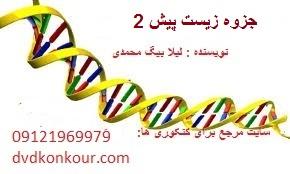 جزوه زیست پیش ۲ نوشته شده توسط لیلا بیگ محمدی دانشجوی داروسازی دانشگاه شهید بهشتی