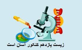 درس زیست شناسی یازدهم